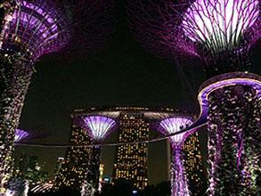 singapur8peque